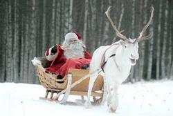 Апартаменты Santa Claus на Новый Год и каникулы в Рованиеми
