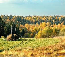 Золотая осень в Кенозерье с 4 по 11 сентября 2014!