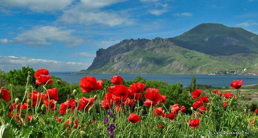 Крым на майские с программой «Горно-морская романтика»