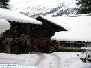 Switzerland_Wengen4521