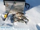 Seliger_fishing