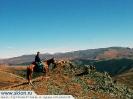 Панорама Алтая