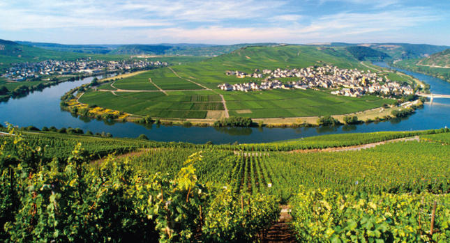 CYCLING_GERMANY_MOSELLE_RIVER_4