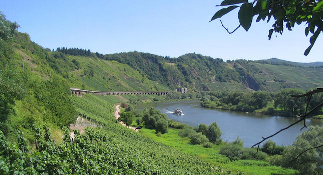 CYCLING_GERMANY_MOSELLE_RIVER_5